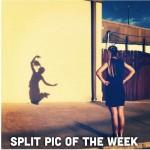 همچنین Easy Tiger سازنده این اپلیکیشن٬ در صفحه فیسبوک خود بهترین عکسهای هفته را منتشر میکند که دیدن آن خالی از لطف نیست.