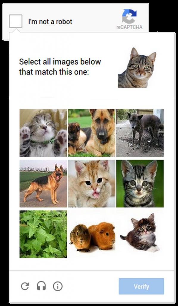 cat_captcha2