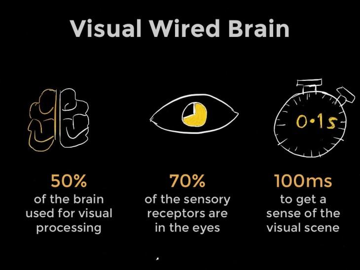 visual-brain-730x548