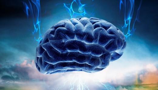 Brain-520x297