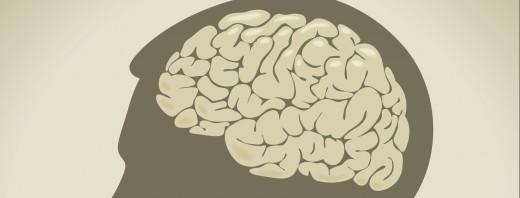 brain1-520x198