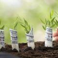 Startup raise money
