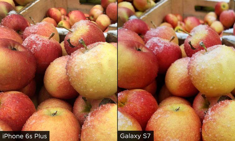apples_w_755