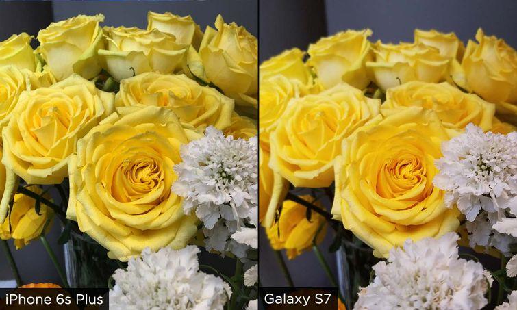 flowers_w_755